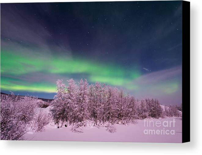 Night Canvas Print featuring the photograph Full Moon Lights by Priska Wettstein