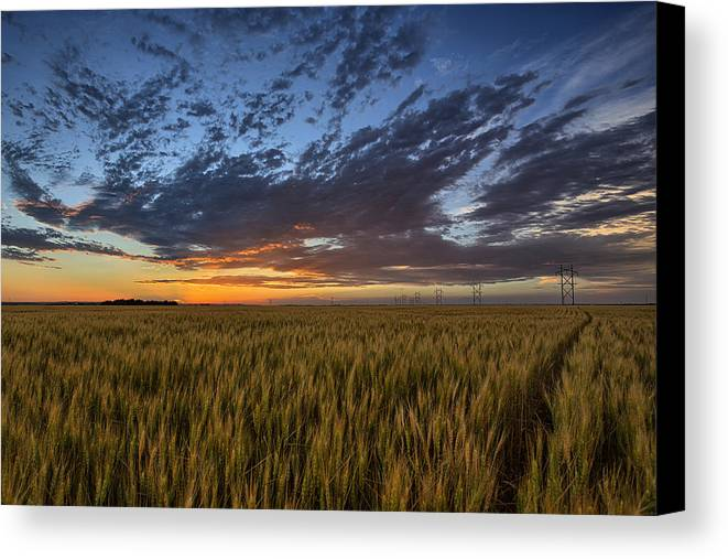 Kansas Canvas Print featuring the photograph Kansas Color by Thomas Zimmerman