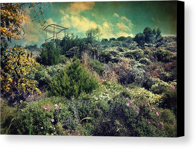 Mountain Canvas Print featuring the photograph Le Printemps by Taylan Soyturk