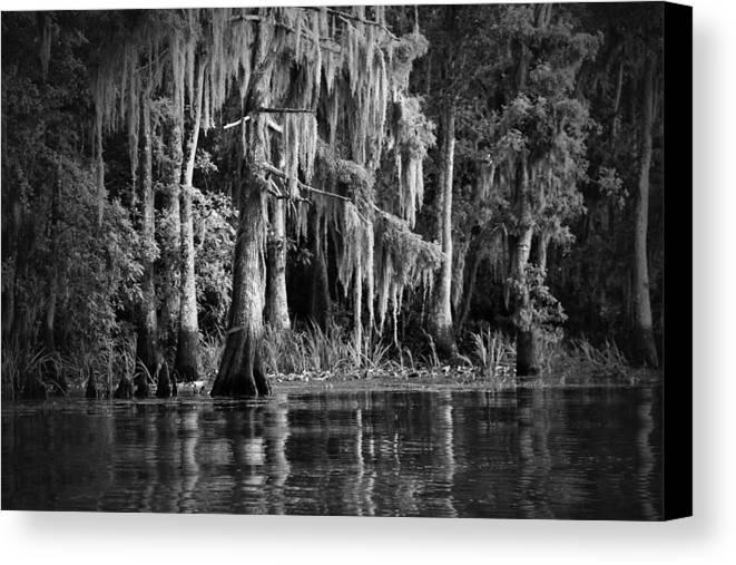 Louisiana Canvas Print featuring the photograph Louisiana Bayou by Mountain Dreams