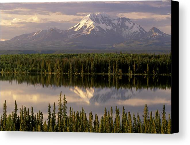 Alaska Canvas Print featuring the photograph Mt Drum Over Willow Lake Wrangell-st by Calvin Hall