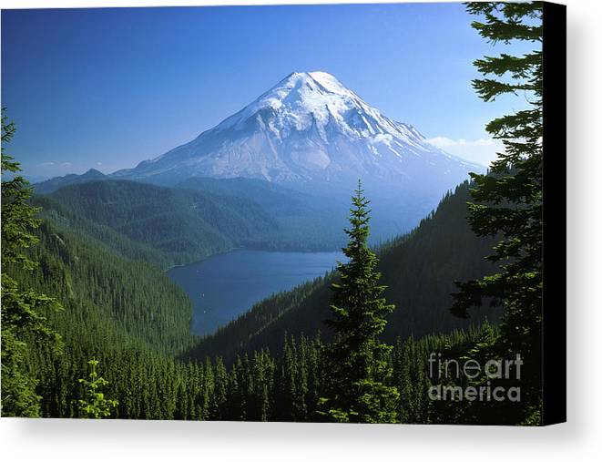 Mt. St. Helens Canvas Print featuring the photograph Mt. Saint Helens by Thomas & Pat Leeson