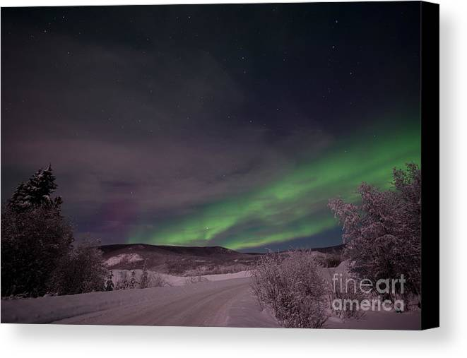 Snowy Canvas Print featuring the photograph Night Skies by Priska Wettstein