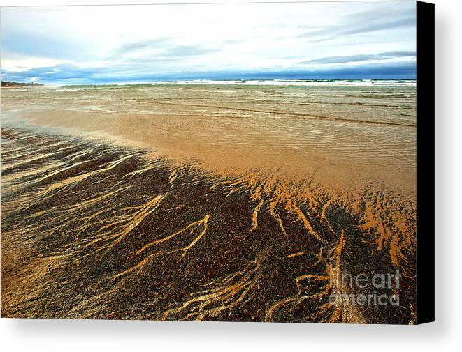 Agate Beach Oregon Canvas Print featuring the photograph Patterns In The Tides by Artist and Photographer Laura Wrede