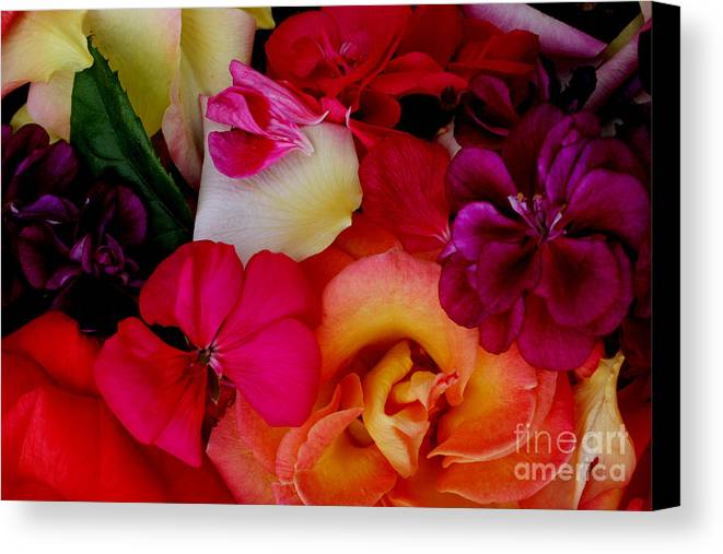 Photography Canvas Print featuring the photograph Petal River by Jeanette French