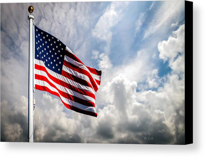 Usa Canvas Print featuring the photograph Portrait Of The United States Of America Flag by Bob Orsillo