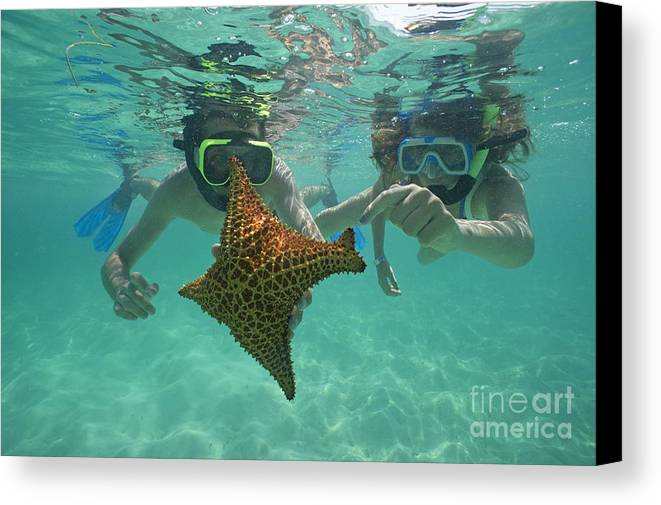 People Canvas Print featuring the photograph Snorkellers Holding A Four Legs Starfish by Sami Sarkis
