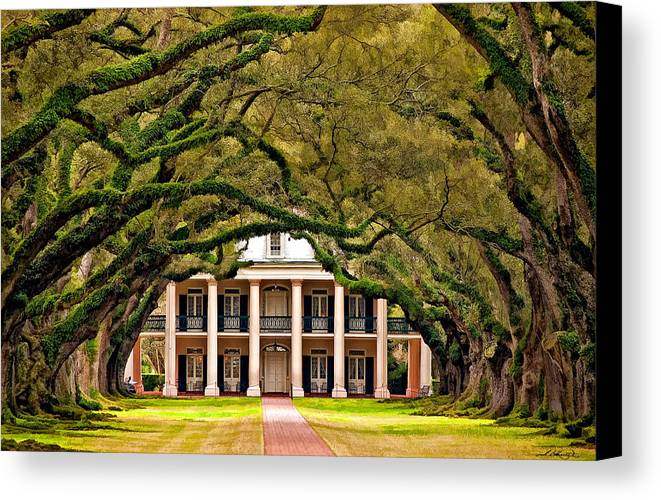 Oak Alley Plantation Canvas Print featuring the photograph Southern Class Painted by Steve Harrington
