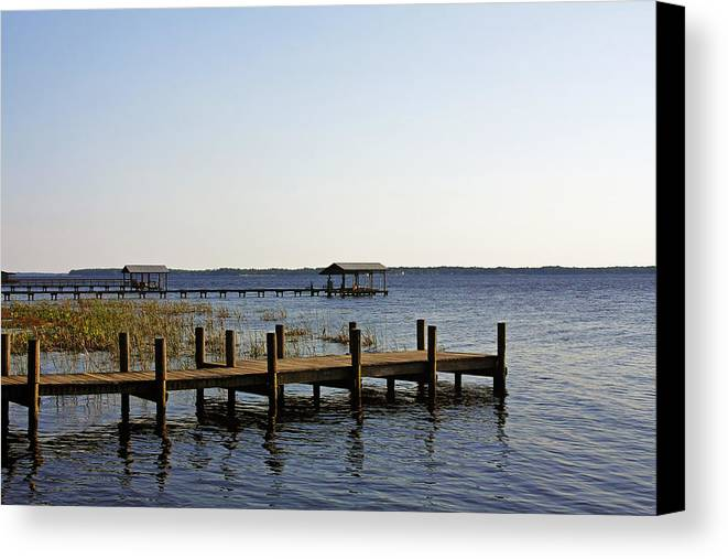 St Canvas Print featuring the photograph St Johns River Florida - Walk This Way by Christine Till