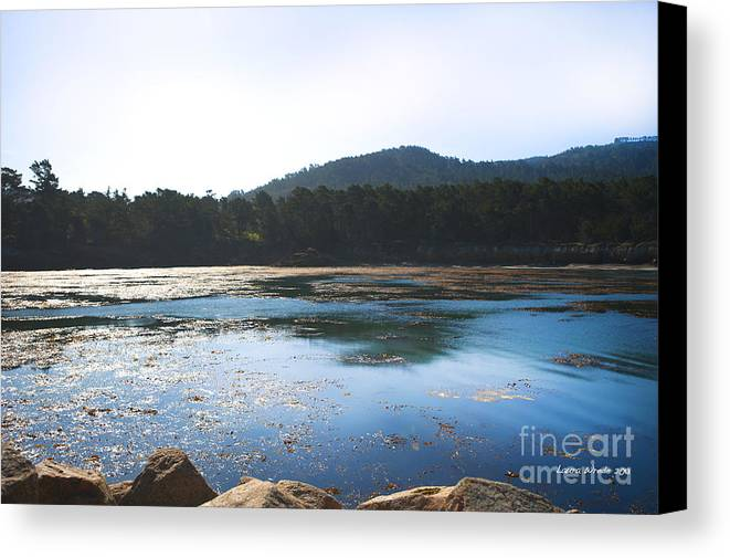 State Beach Near Big Sur Canvas Print featuring the photograph Sunrise Over Whaler's Cove At Point Lobos California by Artist and Photographer Laura Wrede