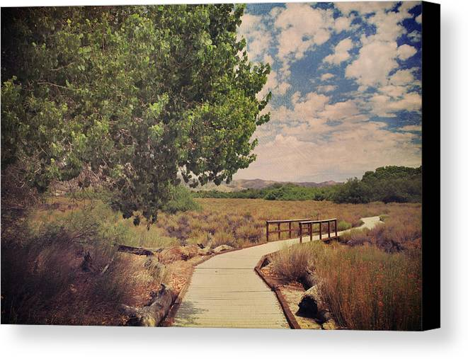 Big Morongo Canyon Preserve Canvas Print featuring the photograph That Helping Hand by Laurie Search