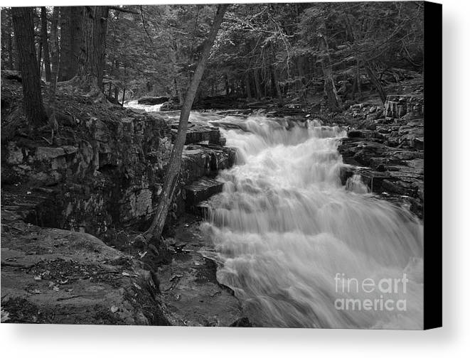 Waterfall Canvas Print featuring the photograph The Falls by David Rucker