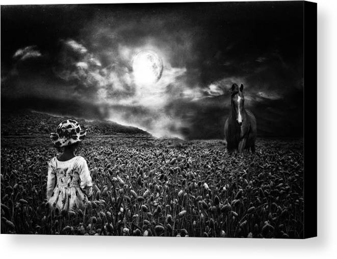 Horse Canvas Print featuring the photograph Under The Moonlight by Sabine Peters