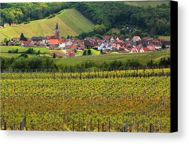 Vineyards Canvas Print featuring the photograph View Of Rodern From The Vineyards Of Alsace by Greg Matchick