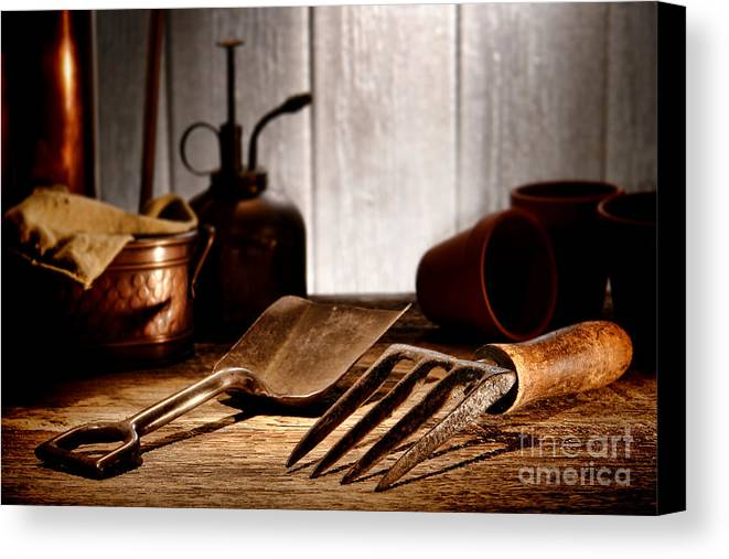 Gardening Canvas Print featuring the photograph Vintage Gardening Tools by Olivier Le Queinec