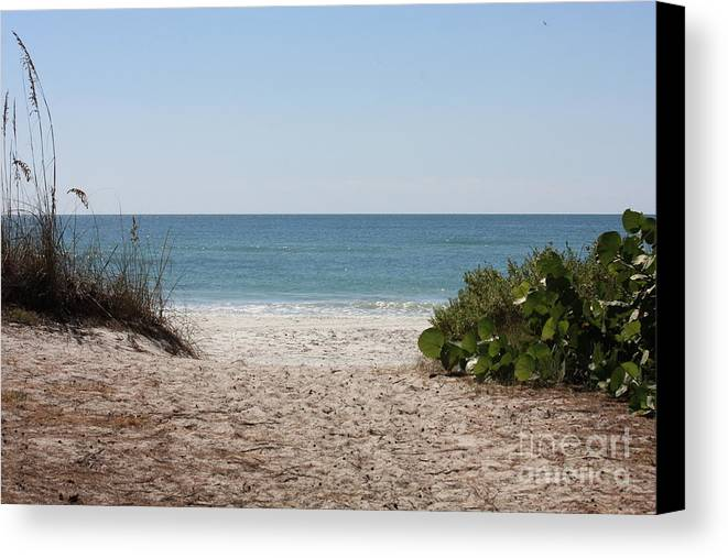 Beach Canvas Print featuring the photograph Welcome To The Beach by Carol Groenen