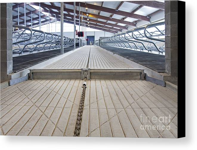 Agricultural Canvas Print featuring the photograph Cowshed Dung Scraper by Jaak Nilson