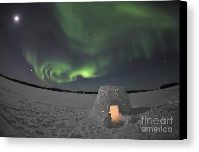 Yellowknife Canvas Print featuring the photograph Aurora Borealis Over An Igloo On Walsh by Jiri Hermann