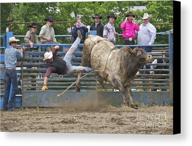 Photography Canvas Print featuring the photograph Bull 1 - Rider 0 by Sean Griffin
