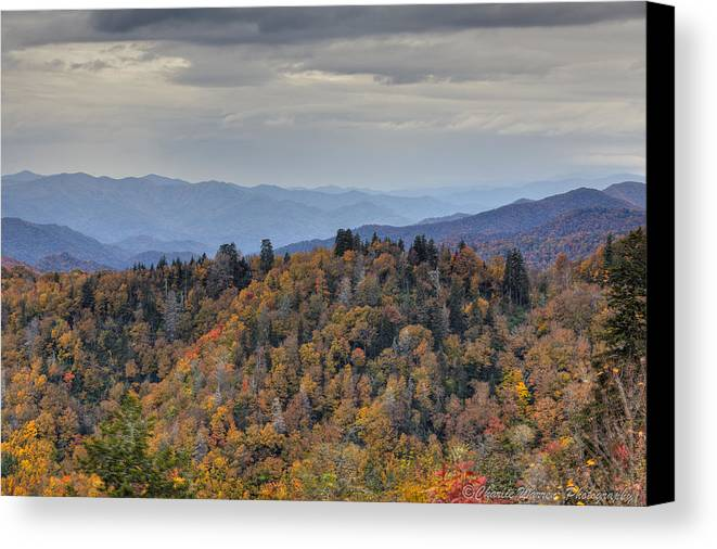 Clingmans Dome Canvas Print featuring the photograph Clingman's Dome IIi by Charles Warren