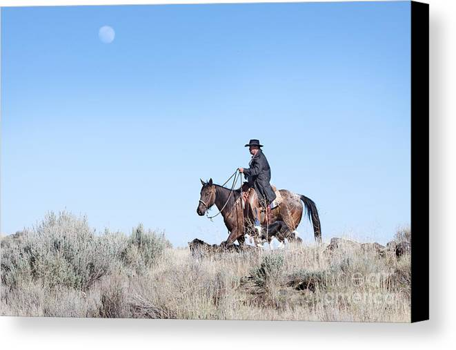 Cowboy Canvas Print featuring the photograph Cowboy Desert Moon by Cindy Singleton