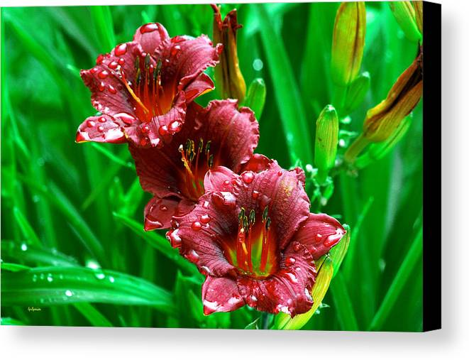 Flowers Canvas Print featuring the photograph Crimson Lilies In April Shower by Lisa Spencer