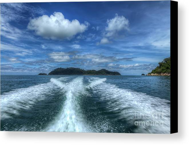 Tropical Canvas Print featuring the photograph Cruising by Adrian Evans