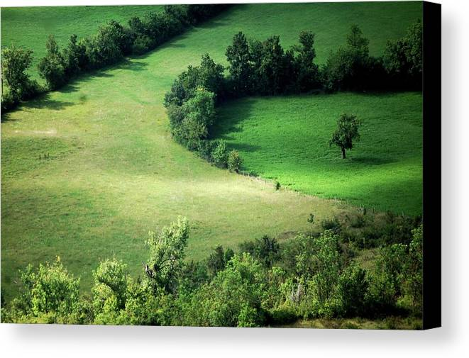 Horizontal Canvas Print featuring the photograph Hedged Farmland by Photo Marylise Doctrinal