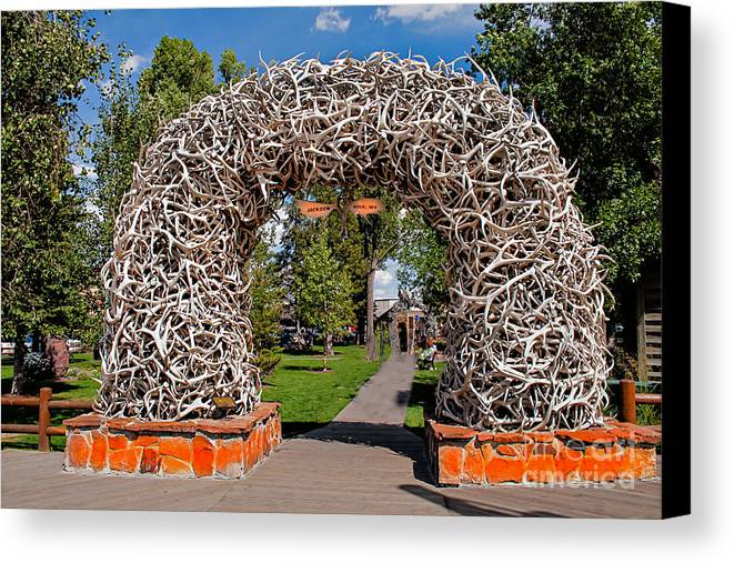 Haybales Canvas Print featuring the photograph Jackson Hole by Robert Bales