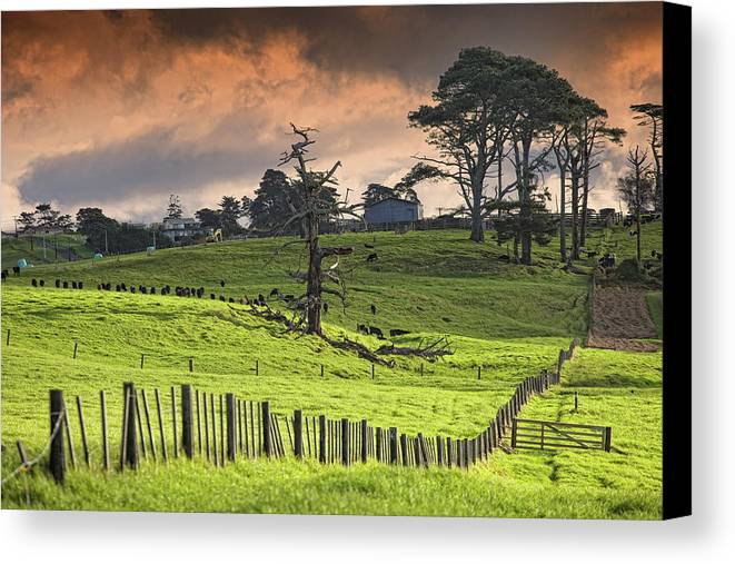 Horizontal Canvas Print featuring the photograph Long Bay Fields by Mark Meredith