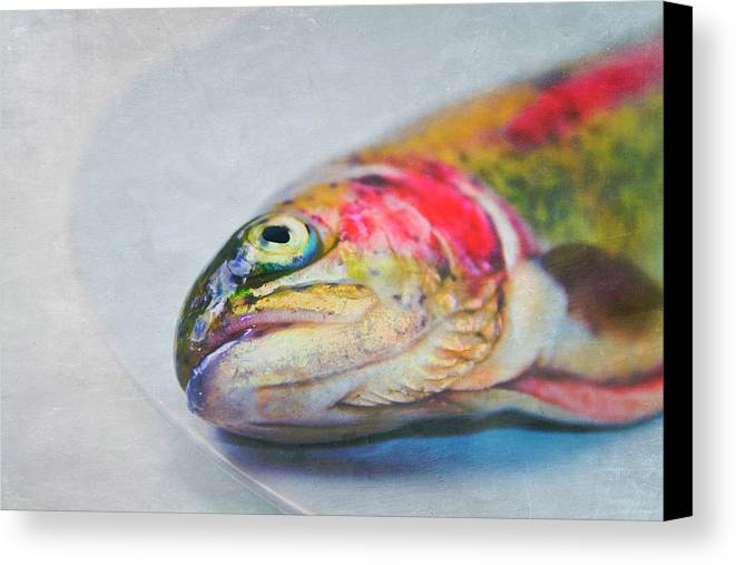 Horizontal Canvas Print featuring the photograph Rainbow Trout On Plate by Image by Catherine MacBride