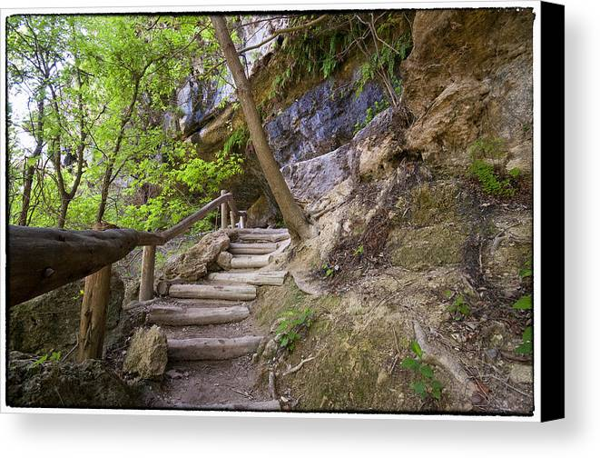 Hamilton Pool Canvas Print featuring the photograph Steps To The Cave by Lisa Spencer