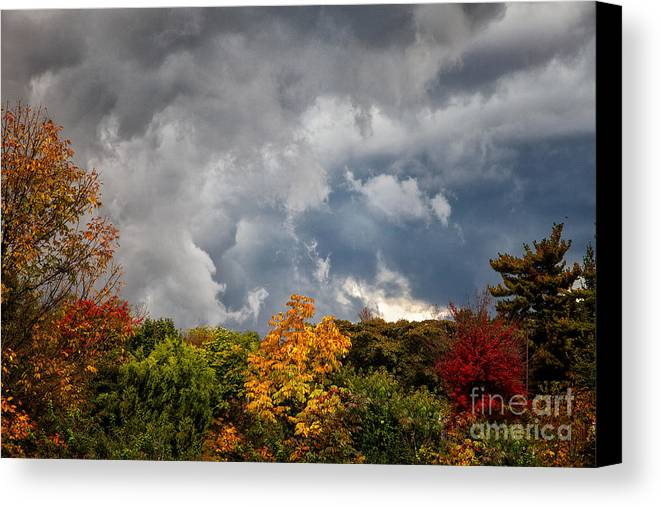 Foliage Canvas Print featuring the photograph Storms Coming by Ronald Lutz