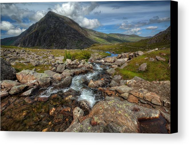 Flowers Canvas Print featuring the photograph Welsh Valley by Adrian Evans