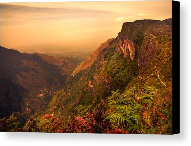 Nature Canvas Print featuring the photograph Worlds End. Horton Plains National Park. Sri Lanka by Jenny Rainbow
