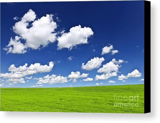 Field Canvas Print featuring the photograph Green Rolling Hills Under Blue Sky by Elena Elisseeva