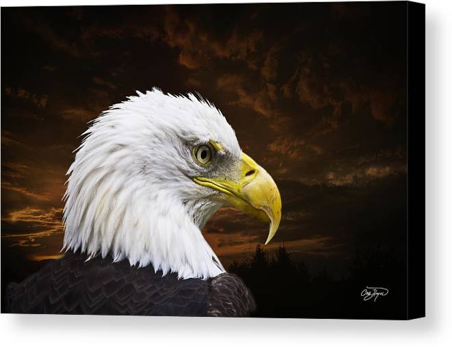 Eagle Canvas Print featuring the photograph Bald Eagle - Freedom And Hope - Artist Cris Hayes by Cris Hayes