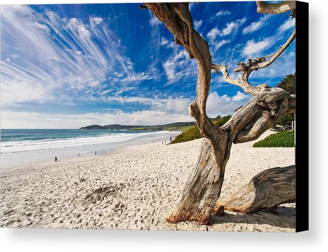 Beach Canvas Print featuring the photograph Beach View Carmel By The Sea California by George Oze