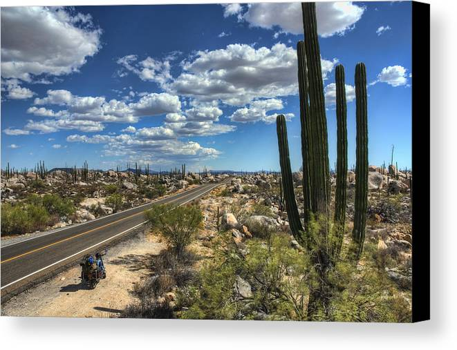 Baja Canvas Print featuring the photograph Center Of The Baja by Rich Beer