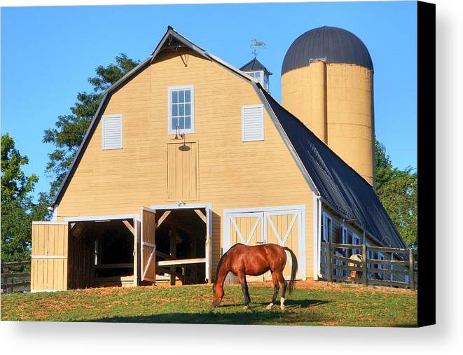 Farm Canvas Print featuring the photograph Farm by Mitch Cat