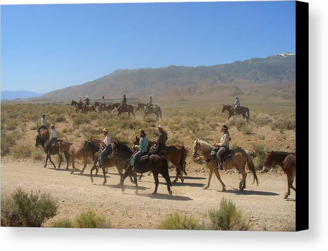 Horses Canvas Print featuring the photograph Horse Drive From June Lake To Bishop California by Christine Till