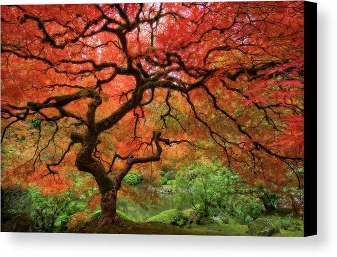 Horizontal Canvas Print featuring the photograph Japenese Garden, Portland by Jesse Estes