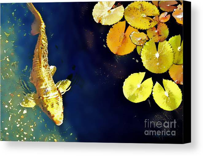 Koi Canvas Print featuring the photograph Jewel Of The Water by Barb Pearson