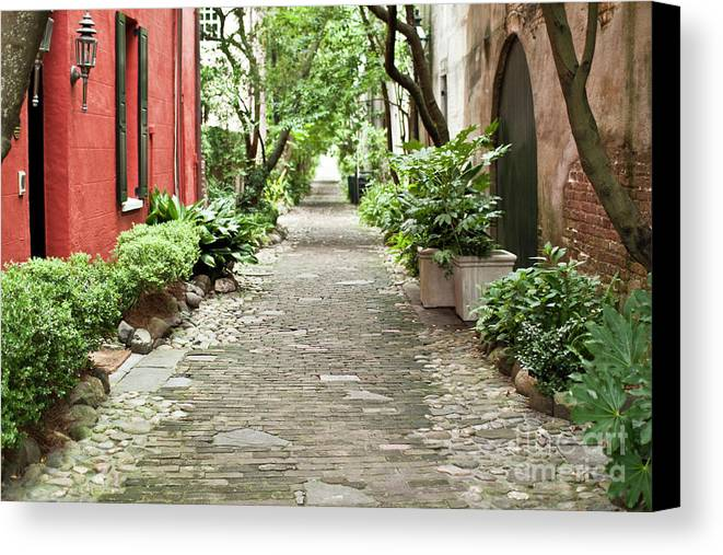 Philadelphia Alley Canvas Print featuring the photograph Philadelphia Alley Charleston Pathway by Dustin K Ryan
