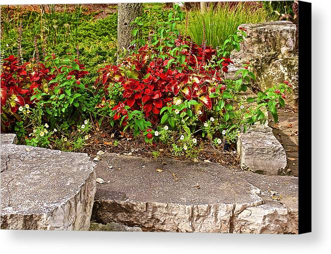Red and green leaves by stone wall in japanese garden in for Landscaping rocks grand rapids mi
