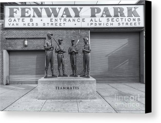 Clarence Holmes Canvas Print featuring the photograph Teammates II by Clarence Holmes