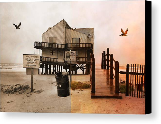 Topsail Canvas Print featuring the photograph The Osprey And The Pelican by Betsy C Knapp