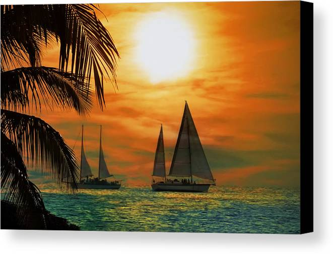 Sail Canvas Print featuring the photograph Two Ships Passing In The Night by Bill Cannon