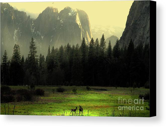 Landscape Canvas Print featuring the photograph Yosemite Village Golden by Wingsdomain Art and Photography