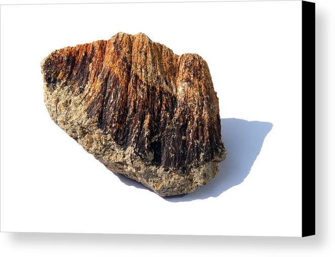 Shatter Cone Canvas Print featuring the photograph Rock From Meteorite Impact Crater by Detlev Van Ravenswaay